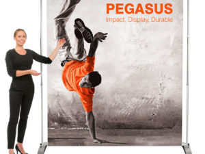 Pegasus Backdrop Banner with Stand
